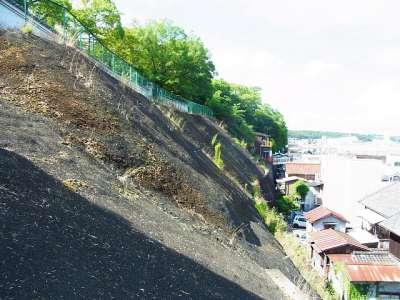 三木城址 北側斜面